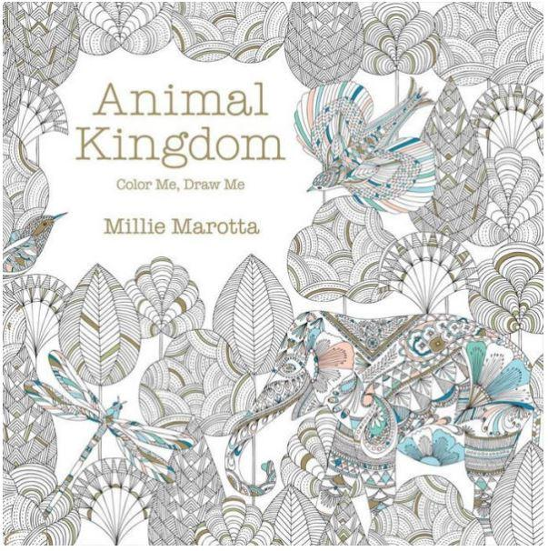 Color Me, Draw Me Animal Kingdom Book Series