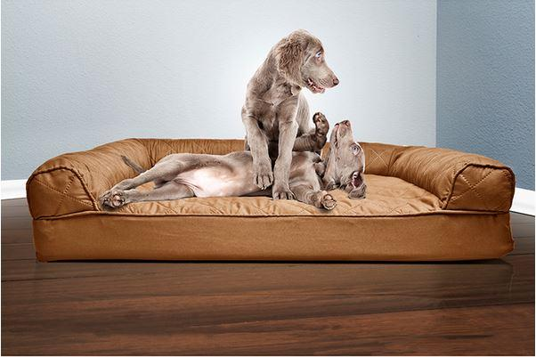 Sofa Quilted Orthopedic Pet Bed