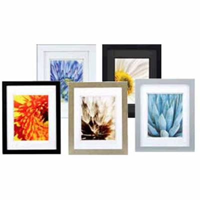 Gallery & Float Wall Frames